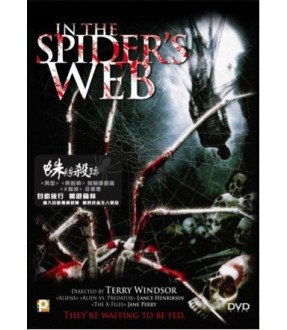 In The Spider's Web (DVD)